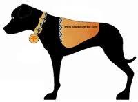 Black Dog Tribe